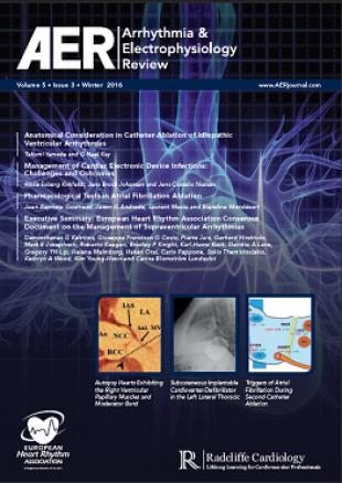 AER - Volume 5 Issue 3 Winter 2016