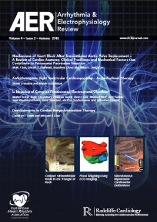 AER - Volume 4 Issue 2 Autumn 2015