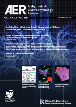 AER - Volume 4 Issue 3 Winter 2015