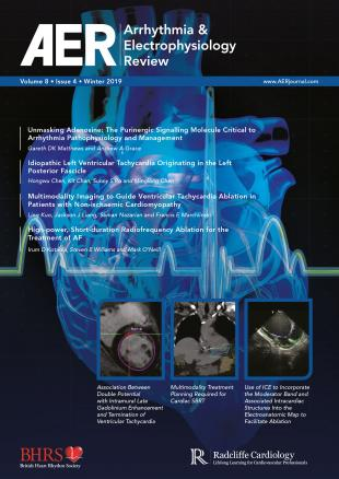 AER Volume 8 Issue 4 Winter 2019