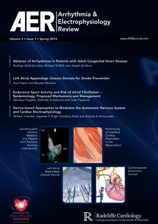 AER  - Volume 3 Issue 1 Spring 2014