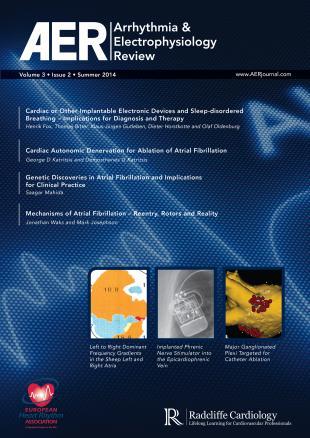AER  - Volume 3 Issue 2 Summer 2014