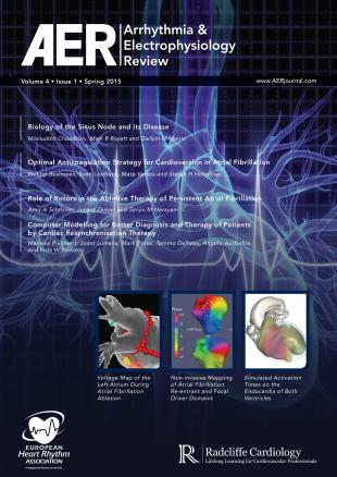 AER - Volume 4 Issue 1 Spring 2015