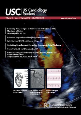 USC - Volume 10 Issue 1 Spring 2016