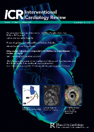 ICR-Volume 11 Issue 2 Winter 2016