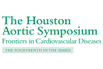 The Houston Aortic Symposium 2021