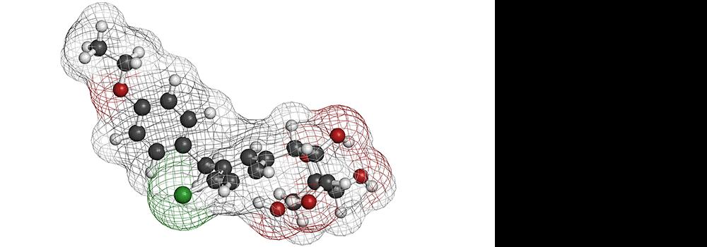 Sodium–Glucose Cotransporter-2 Inhibitors