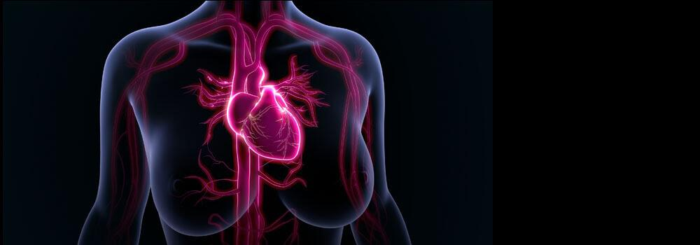 Gender And Atrial Fibrillation: Differences And Disparities