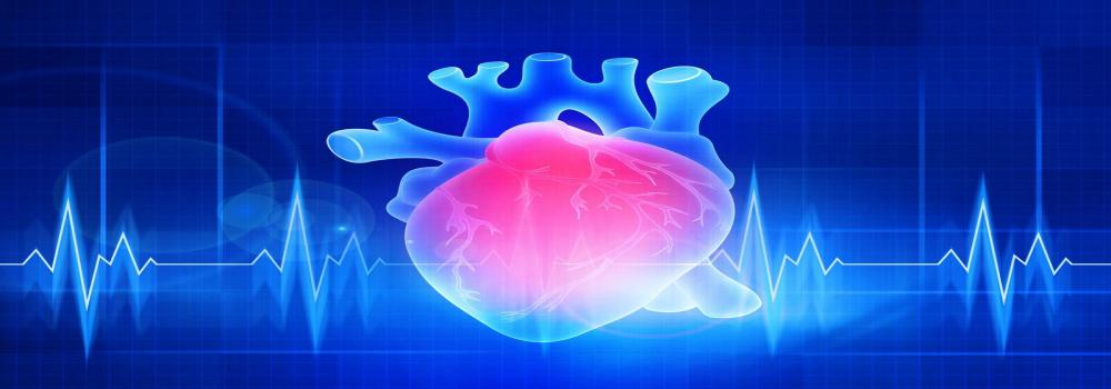 Catheter Ablation Of Atrial Fibrillation – A Key Role In Heart Failure Therapy?
