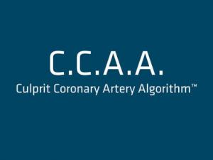 C.C.A.A.