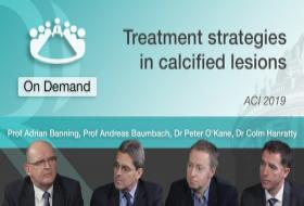 Treatment Strategies in Calcified Lesions