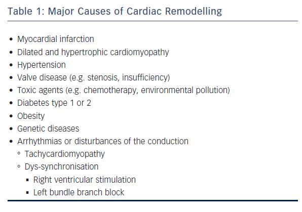 Left Ventricular Remodelling