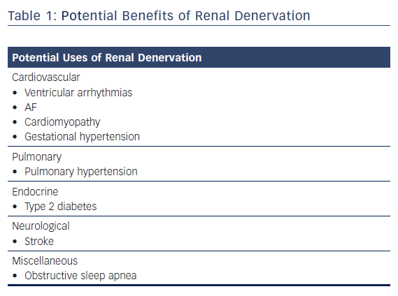 Potential Benefits of Renal Denervation