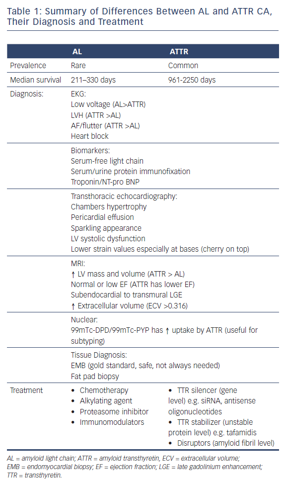 Summary of Differences Between AL and ATTR CA, Their Diagnosis and Treatment