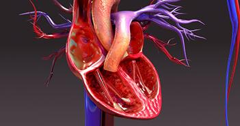 Right heart failure, right ventricular failure, pathophysiology, management, treatment, mechanical circulatory support